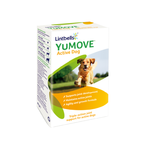 products-YuMOVE-Active-Dog-60