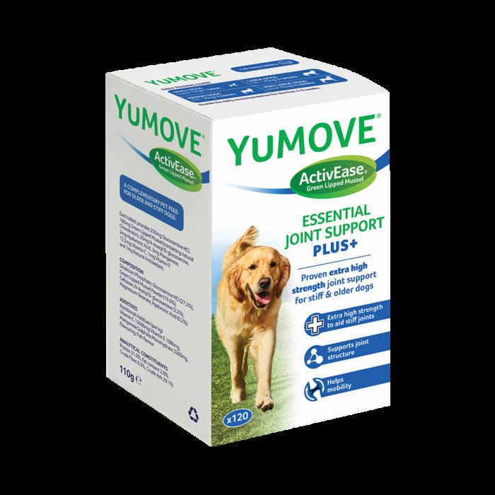 狗狗關節炎吃什麼?幫狗狗補關節,這些食物不可少