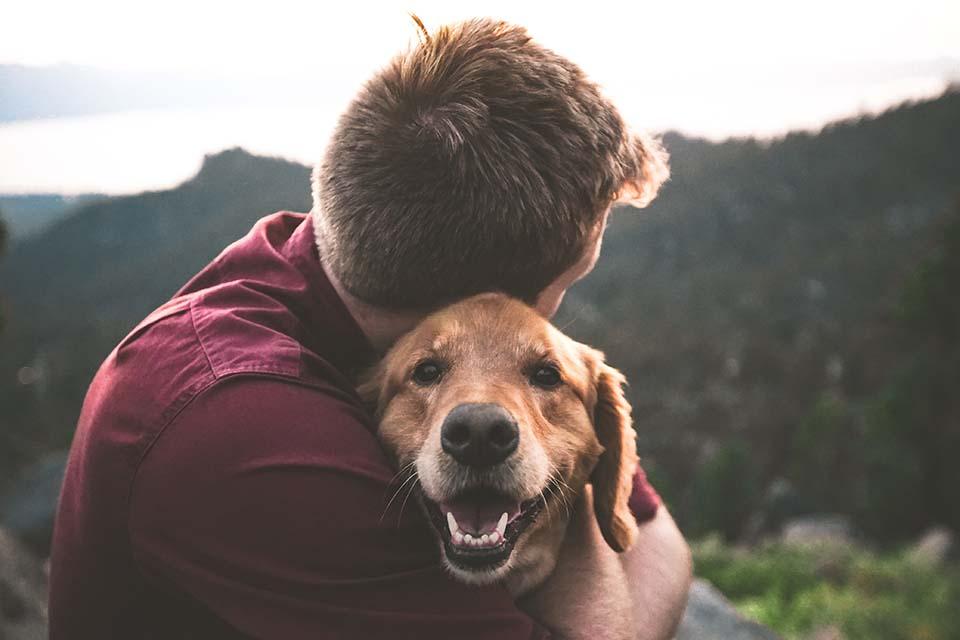 狗狗濕疹怎麼辦?狗狗濕疹預防從細節開始!