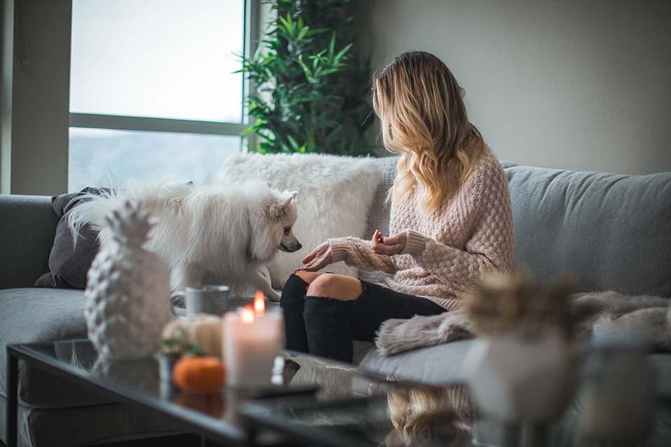 市面上販售著琳琅滿目的狗狗飼料,有沒有狗狗飼料排名清單可以讓我做參考?答案是有的。在網路上任意搜尋都可以找到許多狗狗飼料挑選排名,但是其狗狗飼料評價公信力如何?是否為廣告置入?在美國有一本雜誌名為World Dog Journal(WDJ),它是一本沒有任何商業廣告,只接受訂閱的育犬訓犬雜誌,因此具有相當的權威性。每…