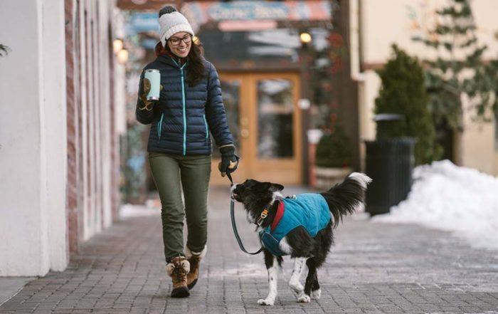 穿上狗狗外套,愛犬不再皮皮挫!